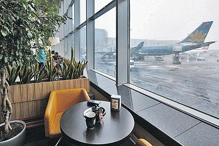 Где перекусить в аэропорту Внуково: рестораны, кафе, столовые