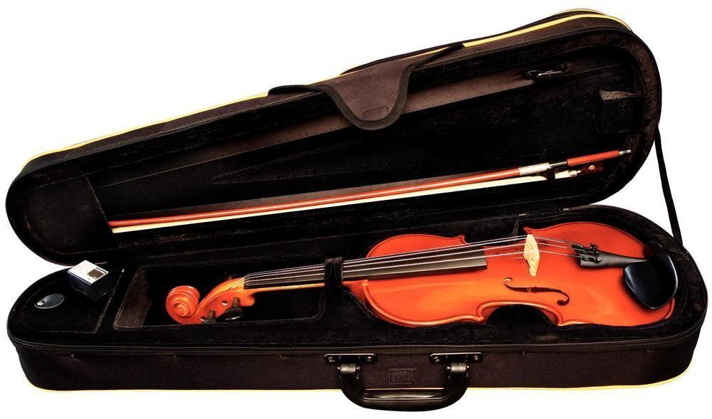 Чехол для транспортировки музыкального инструмента в лайнере