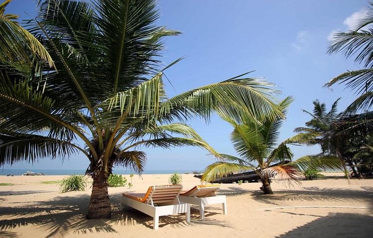 Нужна ли виза в Шри-Ланку