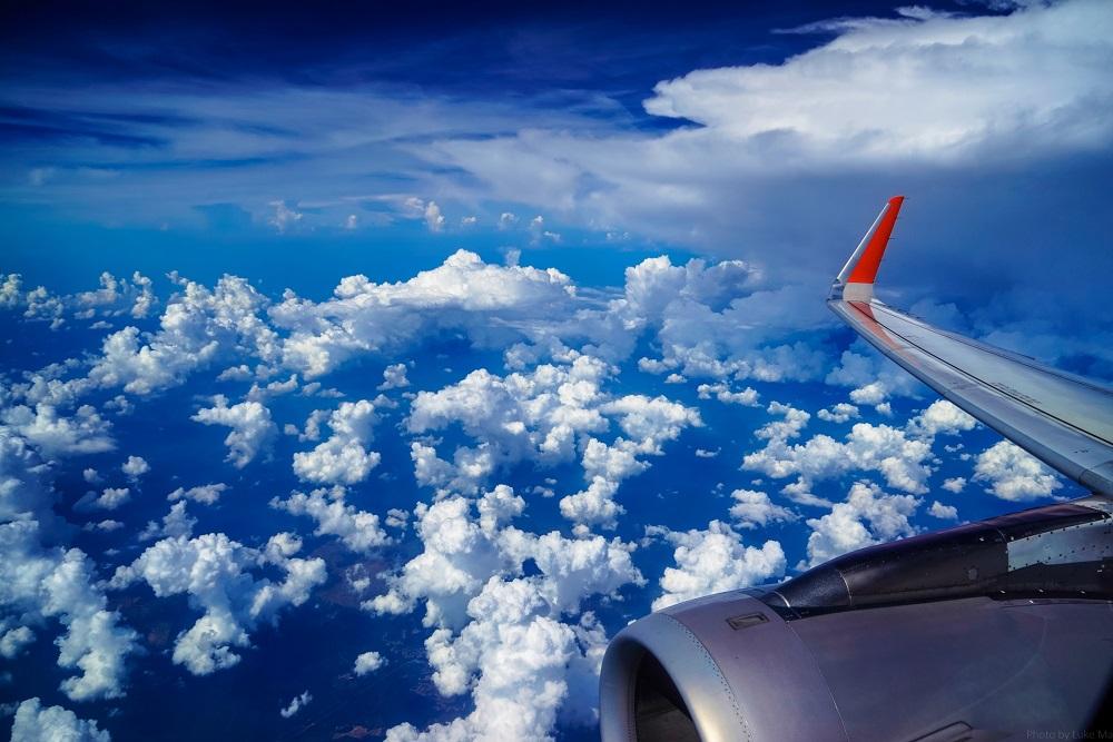 Россия и Сербия могут возобновить авиасообщение в октябре